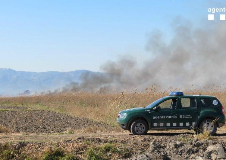 Un incendi forestal afecta una superfície de 2,4ha a Balaguer