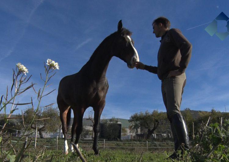 El genet Albert Hermoso finalitza una temporada d'èxits
