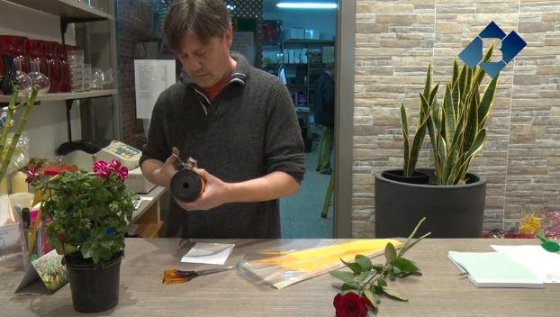 Els floristes preveuen una bona campanya de venda de roses per Sant Jordi
