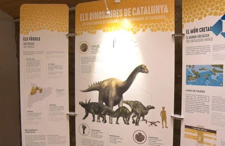 Camarasa acull una mostra sobre les descobertes de dinosaures a Catalunya