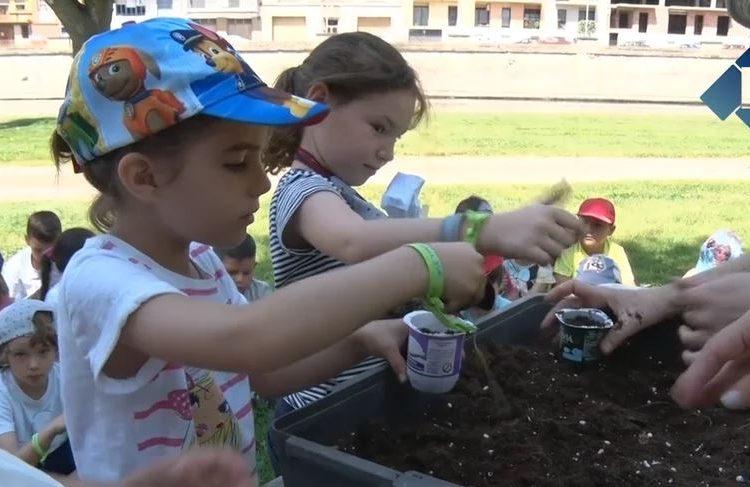 Prop de 300 escolars celebren el Dia Mundial del Medi Ambient