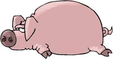 El nom del porc és Gener