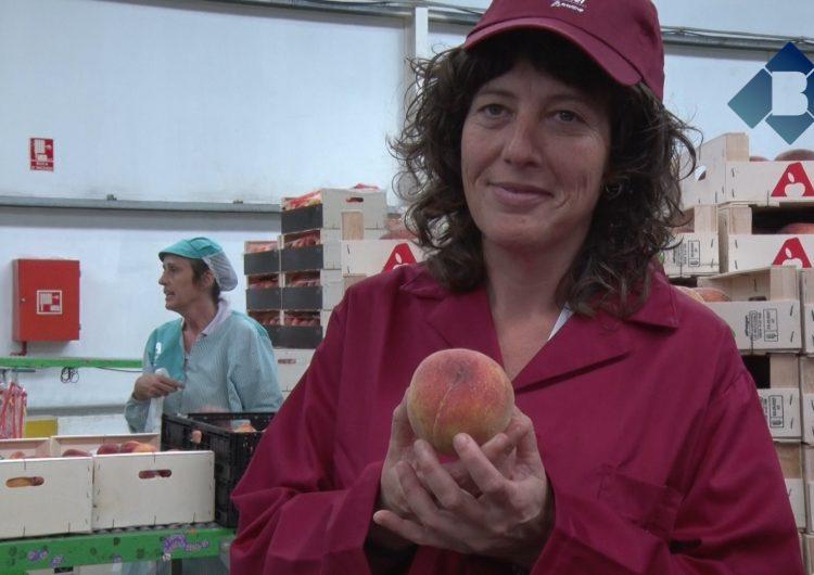 La consellera Teresa Jordà visita el Centre Logístic Fruiter ActelGrup de Térmens