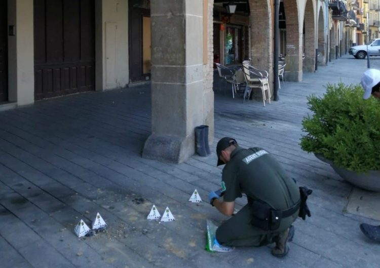 Els Agents Rurals investiguen la destrucció de nius d'oreneta cuablanca a Balaguer