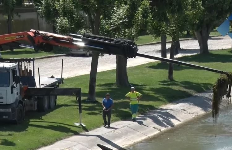 L'Ajuntament de Balaguer comença la neteja del riu Segre