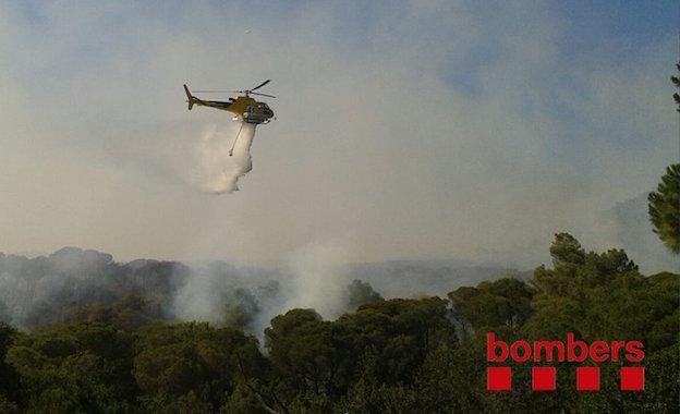 Aquest dijous comença la prohibició de fer foc al bosc