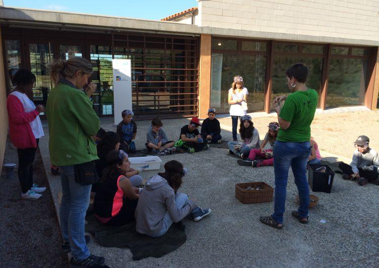 L'Espai Orígens celebra el Dia Mundial del Medi Ambient amb activitats sostenibles