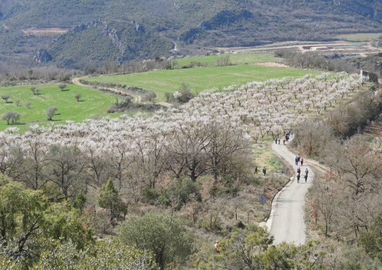 La Diputació de Lleida rebrà més de quatre milions d'euros de fons europeus per promoure camins i rutes al territori