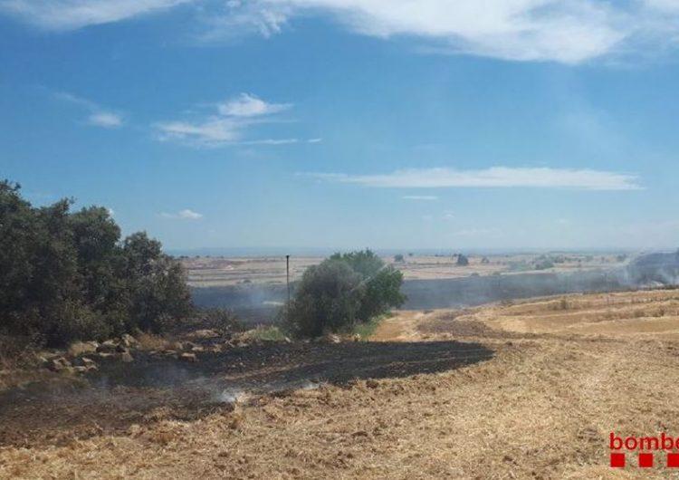 Un incendi crema 7,7 ha de vegetació agrícola a Castelló de Farfanya