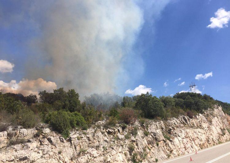 Un incendi crema 1,3 hectàrees d'alzines a Camarasa