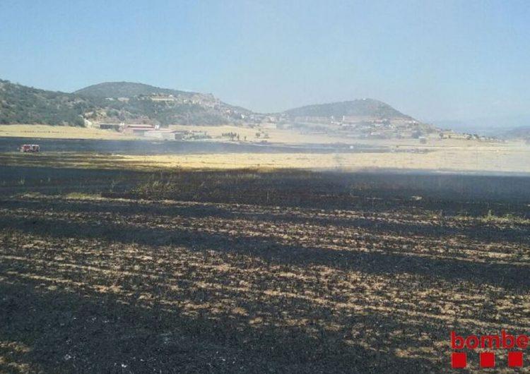 Un incendi crema 14 hectàrees de conreus a Foradada