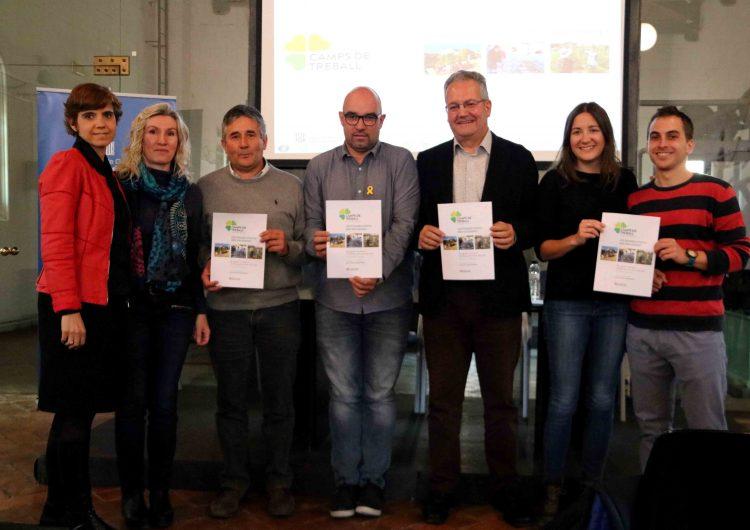 Joventut impulsa 17 camps de treball a la demarcació de Lleida