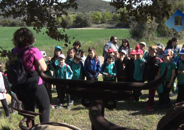 Els alumnes de l'Escola Els Planells descobreixen les obres 'Land Art' de Foradada