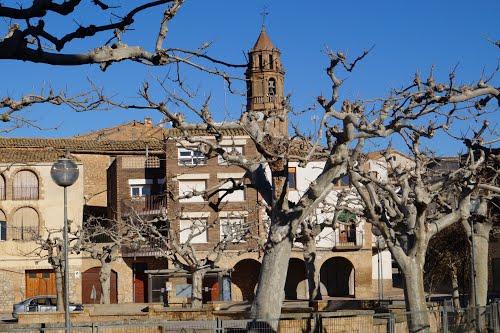 Detingut un veí de Balaguer per robar en una explotació ramadera i en una empresa de transports del Segrià