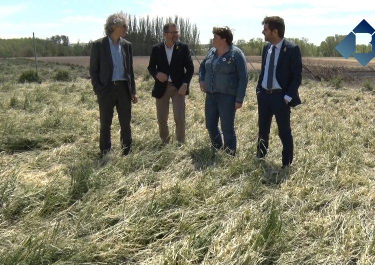 Els municipis de la Noguera afectats per la pedregada de dissabte estudien demanar la declaració de zona catastròfica