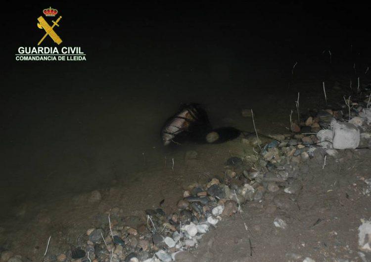 La Guàrdia Civil detecta 27 infraccions a la normativa de pesca continental durant la revetlla de Sant Joan