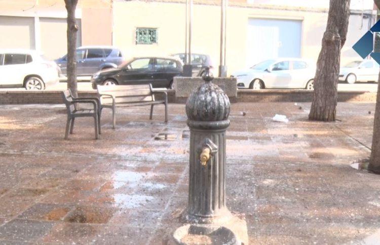 Balaguer remodelarà la plaça Vedruna malmesa per la plaga d'estornells