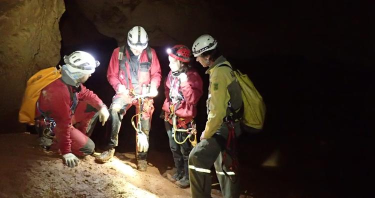 La Generalitat impulsa el seguiment hivernal de ratpenats en espais naturals com el Massís del Montsec