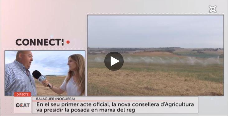 L'arribada del reg de l'Algerri – Balaguer, a Connecti.cat