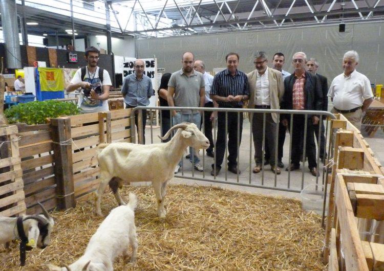 'inaugura la V Fira d'Alimentació i Salut, organitzada per l'associació Slow Food Terres de Lleida