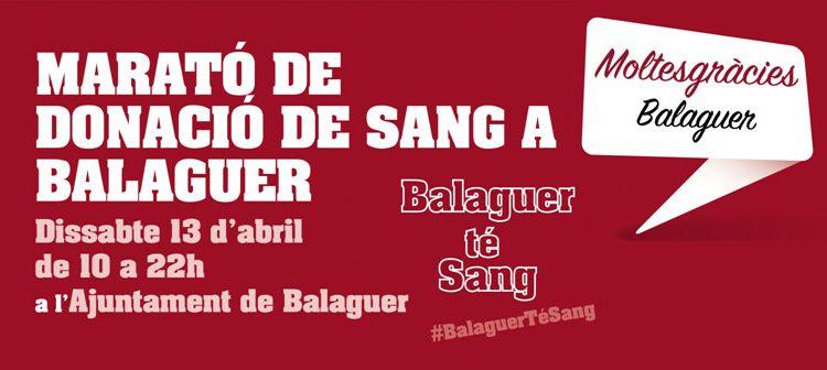 La Marató de Sang de Balaguer vol superar el rècord de donacions de l'any passat