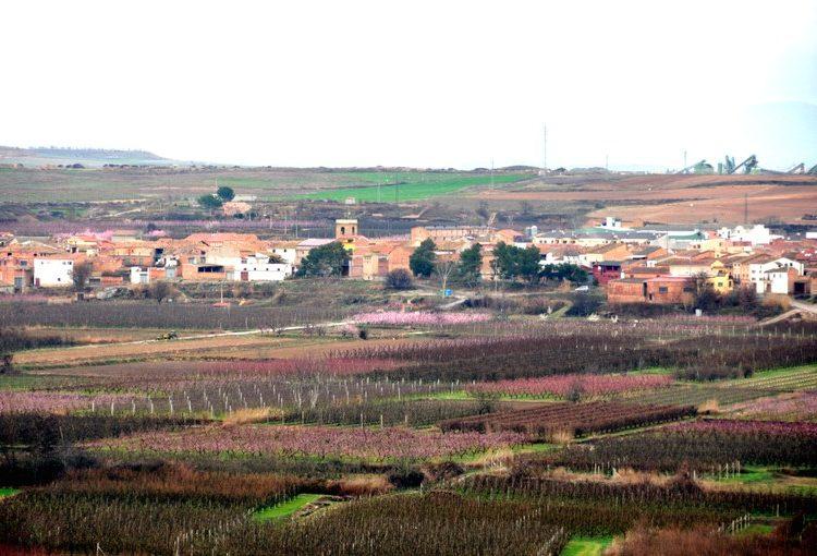 La Junta Electoral suspèn un acte convocat per l'Ajuntament de Torrelameu al veure'l electoralista