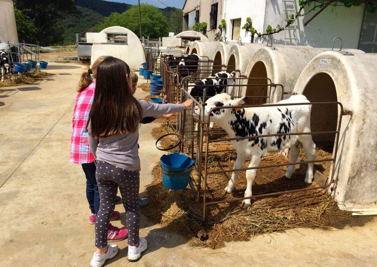 Més d'una vintena de cases de pagès, allotjaments i restaurants de la Noguera participen a la 3a edició de Benvinguts a Pagès
