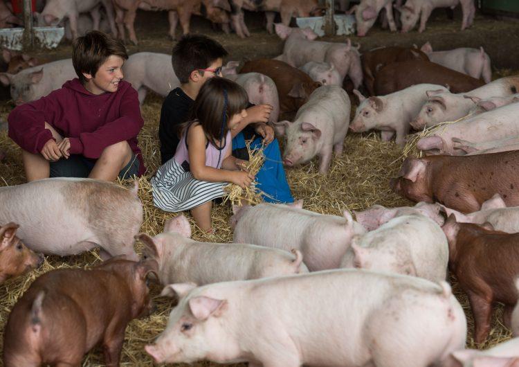 """La Noguera tornarà a participar a la tercera edició de """"Benvinguts a Pagès"""" que se celebrarà el cap de setmana del 9 i 10 de juny"""