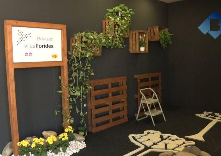 L'Ajuntament de Balaguer presentarà el projecte Viles Florides en el marc de Fira Q