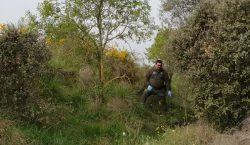 Troben un gos mort amagat en una zona forestal de…