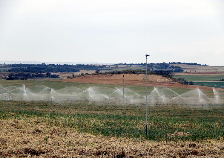 Aprovada la fase final de la concentració parcel·lària a Balaguer