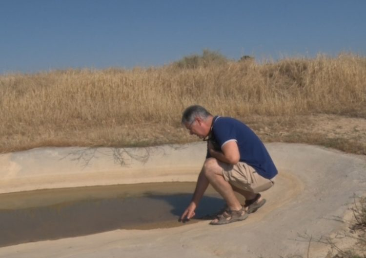 Recuperen sis basses dels secans de la Noguera amb finalitats ecològiques