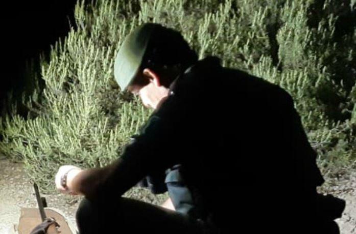 Denuncien un caçador furtiu que ulilitzava un reclam prohibit per la caça del cabirol a la Noguera