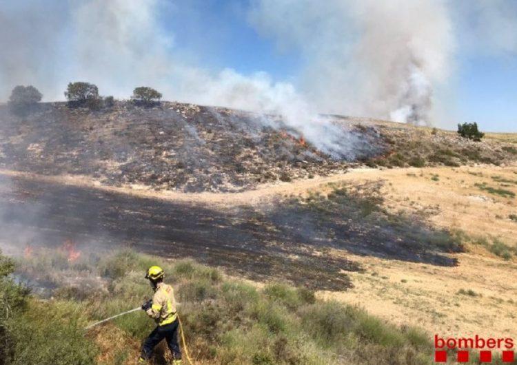 Un incendi crema 16,9 hectàrees a l'Espai d'Interès Natural Serra Llarga de Castelló de Farfanya