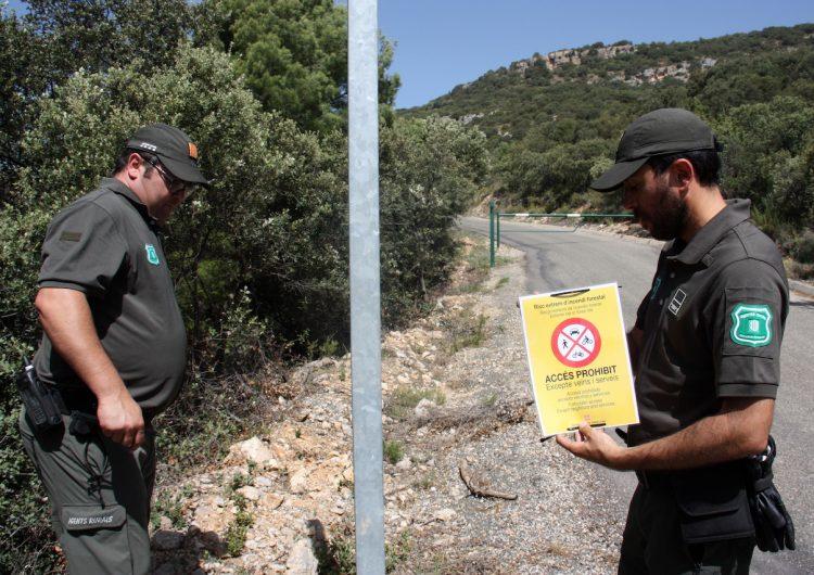 Agricultura alerta de l'alt risc d'incendi i activa en 12 comarques el Nivell 3 del Pla Alfa