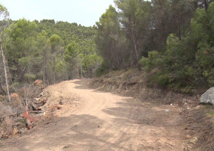 El Monestir de les Avellanes posa en marxa un pla de gestió forestal als seus boscos de propietat privada pel risc d'incendi