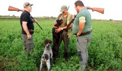 Les comarques de Lleida obren la mitja veda de caça,…