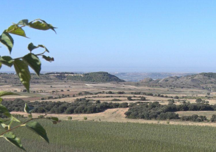 Algerri engega un projecte per posar en valor i donar a conèixer l'espai natural de la Serra Llarga-Secans de la Noguera