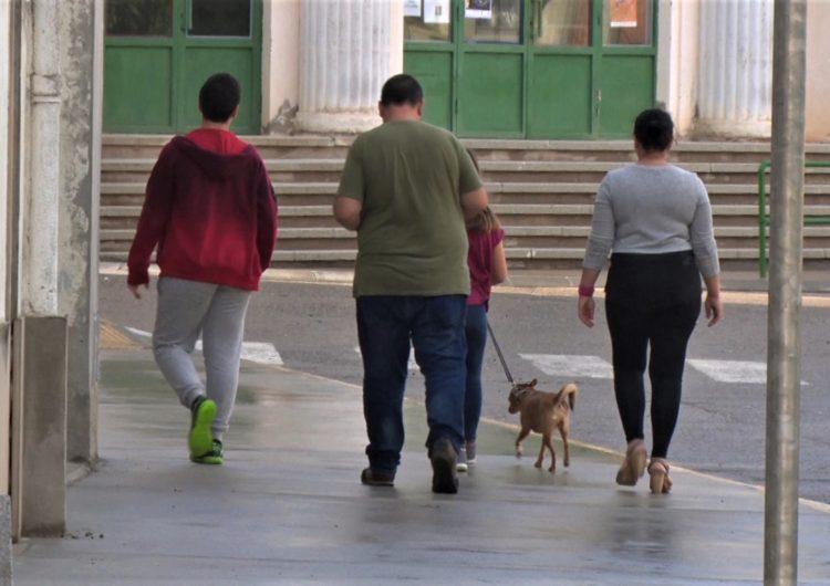 Menàrguens inicia una campanya de sensibilització per fomentar la recollida d'excrements de gos