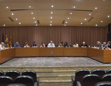 El ple de la Paeria de Balaguer aprova la nova ordenança reguladora de la protecció d'animals
