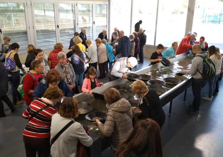 El Museu de l'or de Balaguer, Punt de partida d'una de les rutes del 'Bus a cegues'