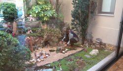La Residència Sant Domènec instal·la un pessebre amb més de…