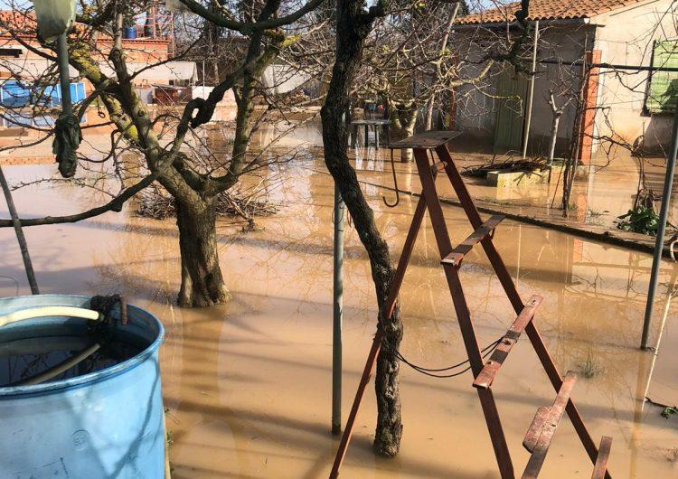 La crescuda del riu Sió afecta diversos camps i propietats privades a Balaguer