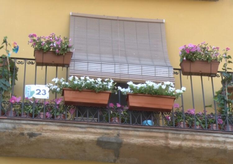 El concurs fotogràfic Flors als Balcons de Balaguer es farà del 15 al 25 de juny a Instagram
