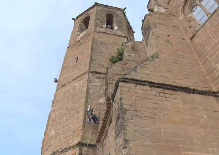 Un escalador neteja la vegetació de la façana de l'església de Santa Maria