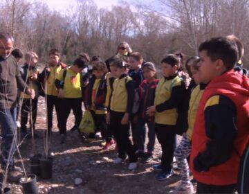 El Centre de Recursos Pedagògics adapta les activitats del Pla Municipal de Dinàmica Educativa