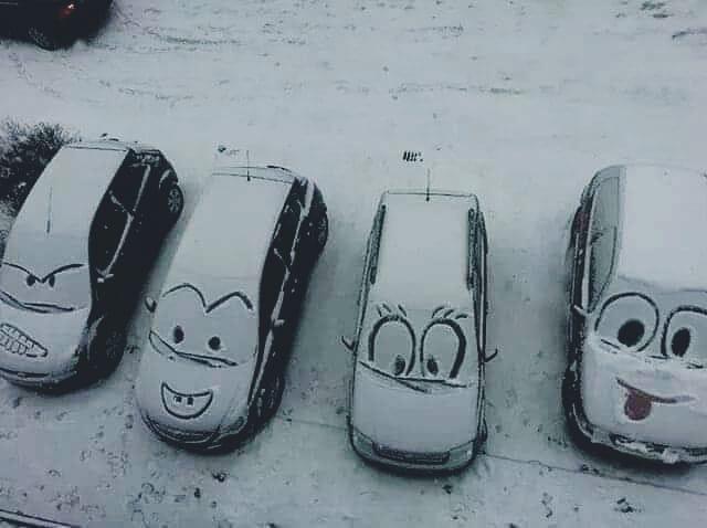 Galeria: Les imatges de la nevada