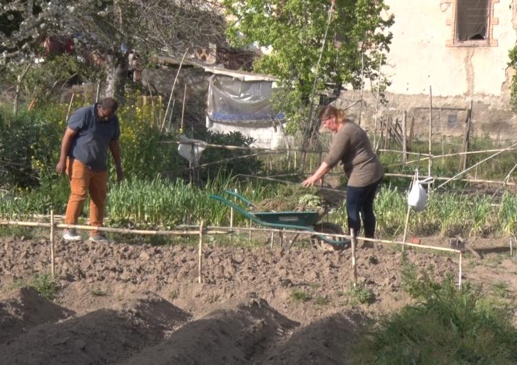 En marxa la 11a temporada del Cultiva't – Horts Comunitaris a Balaguer