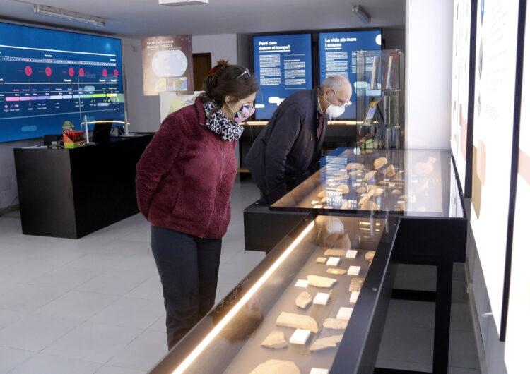 El Centre d'Interpretació del Montsec obre al públic amb una nova col·lecció de fòssils de fa 125 milions d'anys