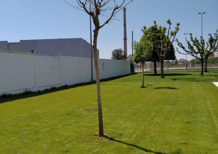 Balaguer replanta arbres en diferents carrers de la ciutat i projecta nous espais verds